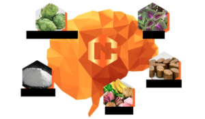 Neurocyclin - ราคาเท่าไร - อาหารเสริม - ราคา
