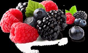 Vita Fresh - ราคาเท่าไร - อาหารเสริม - ราคา
