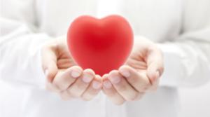 Carditonus - สำหรับความดันโลหิตสูง - lazada - หา ซื้อ ได้ ที่ไหน - สั่ง ซื้อ