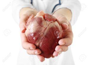 Carditonus -pantip - พัน ทิป - ของ แท้