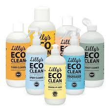 Ecoclean – รีวิว – ของ แท้ – สั่ง ซื้อ