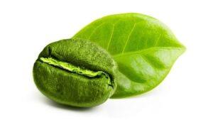 Green Coffee - Thailand - ซื้อที่ไหน - ขาย - lazada - เว็บไซต์ของผู้ผลิต